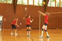 Volley_Damen_National_04.06__4__800